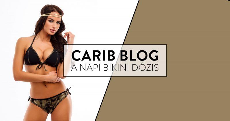 carib-blog-2018-szinek