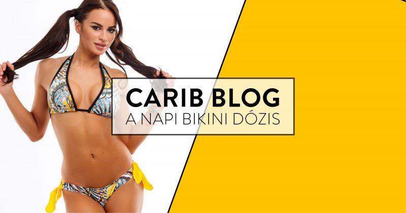 carib-blog-2018-tengerpart