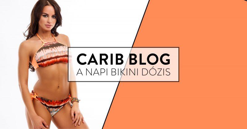 carib-blog-2018-bikini-stilusiskola
